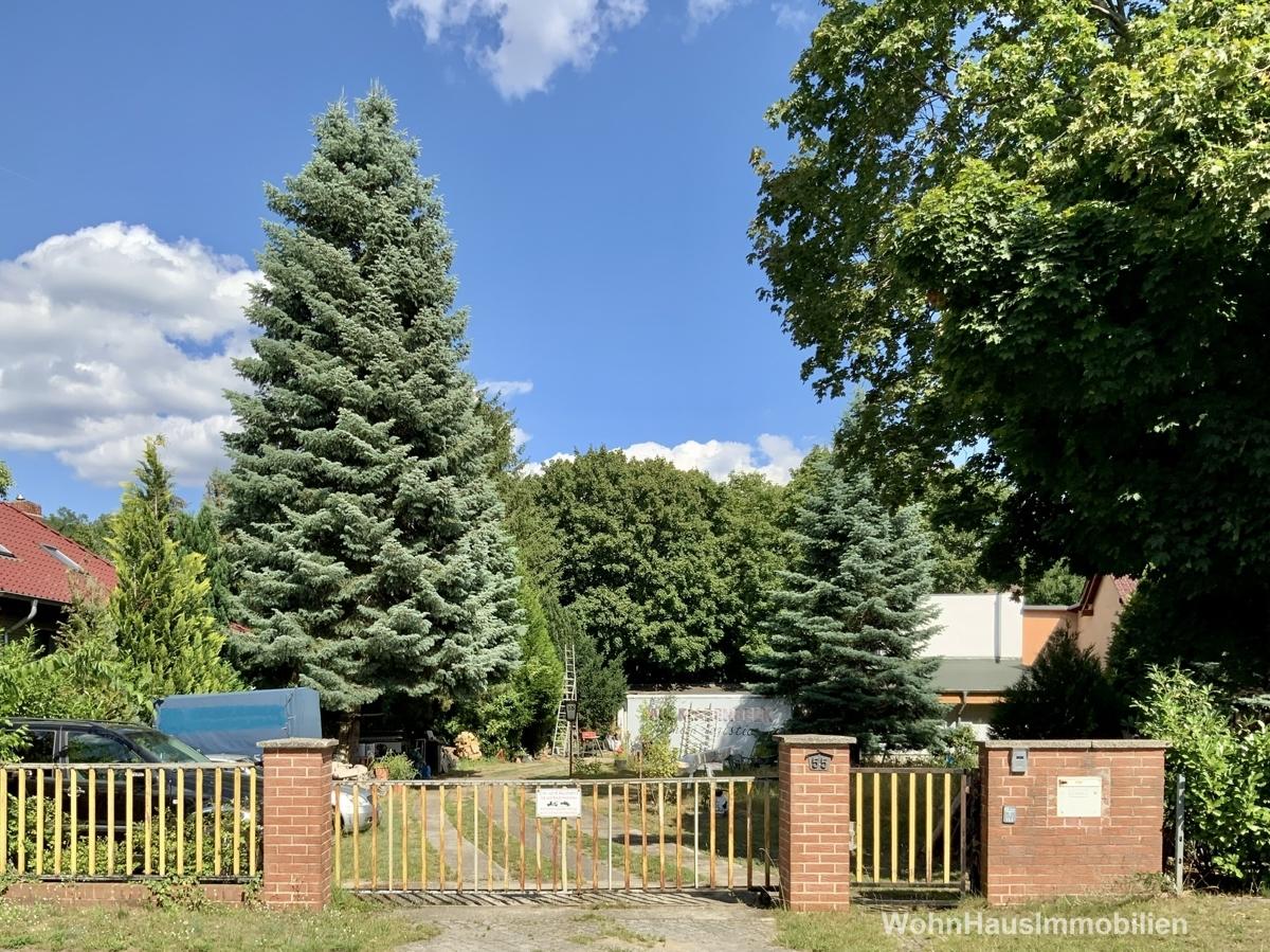 Freies Grundstück in Adlershof